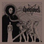 VOIDHANGER - WORKING CLASS MISANTHROPY (CD)
