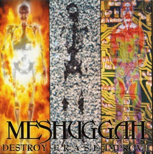 MESHUGGAH - DESTROY ERASE IMPROVE (LP)